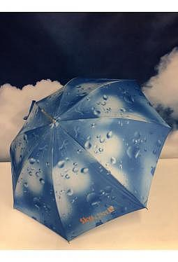 Regenschirm SkyAccess